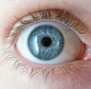 Por qué los seres humanos nacen con ojos azules?