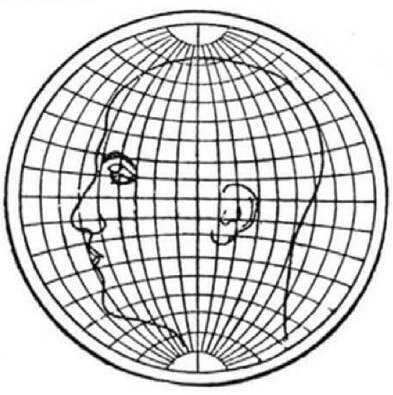 cabeza-proyeccion-globular