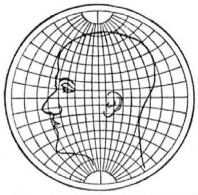 cabeza-proyeccion-estereografica