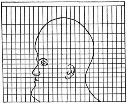 cabeza-proyeccion-mercator